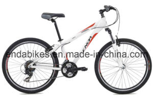 Mountain Bike (TIB70)