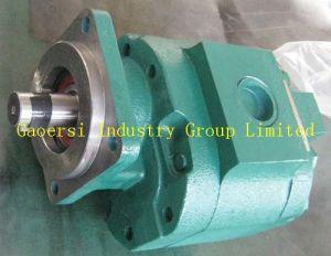 High Pressure Pump, Gear Pump, Forklift Parts (P76)