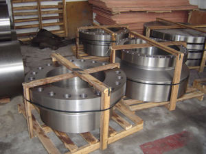 Forging Parts/Forged Parts for Pressure Vessel pictures & photos