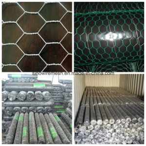 PVC Coated Galvanized Heavy Hexagonal Wire Mesh/Netting pictures & photos