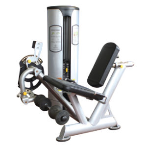 Freemotion Gym Equipment Leg Extension (SZ06) pictures & photos