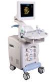 4D Color Doppler Ultrasound for People (KR-810)
