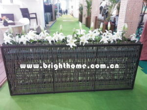 Outdoor Garden Set /Flower Pot Bp-F10b pictures & photos