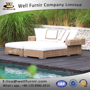 Well Furnir Chaise Daybed with Cushions pictures & photos