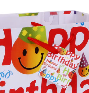 Handmade Paper Craft Gift Bags for Birthday Party Paper Bag pictures & photos