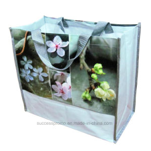 Promotional Gift PP Woven Shopping Laminated Ladies Bag pictures & photos