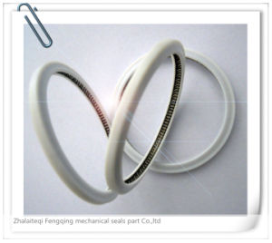 Hydraulic PTFE Stainless Steel Spring Energized Seal pictures & photos
