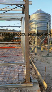 Cheap Price Insulation Broiler House pictures & photos
