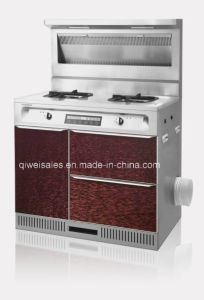 Integrated Cooker with Double Gas Stove (SX-90-1) pictures & photos