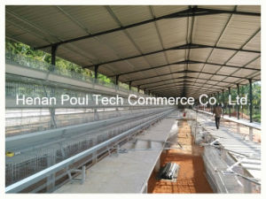 Poul Tech Layer Battery Cage System pictures & photos
