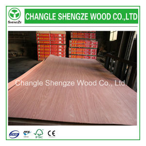Hot Sale Good Quality Ash Veneer Plywood pictures & photos