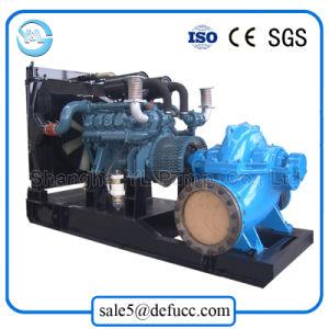 Diesel Engine Irrigation Split Case Flood Water Pump pictures & photos