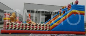 Giant Funny Kids Moonwalk Jumper Inflatable Bouncer Slide for Sale pictures & photos