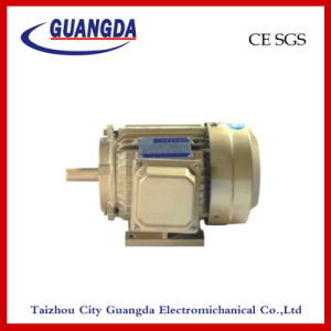 CE SGS 2.2kw Triple-Phase Air Compressor Motor pictures & photos