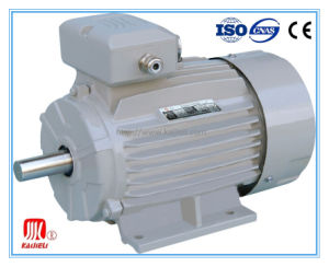 Ie2, Ie3 High Efficiency Three Phase Electric Motor pictures & photos