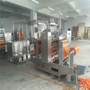 Sachet Ice Lolly Four-Side Sealing and Multi-Line Packing Machine pictures & photos