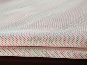 Stripe Fabric Yarn Dyed Dobby Poplin for Shirt (004)