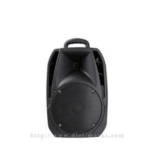 8-15 Inch Portable Bluetooth Active Wireless Stereo Speaker pictures & photos