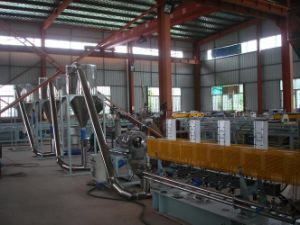 PE+Wood Pelletizing Machines
