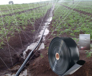 Flat Type Irrigation Tube for Drip Irrigation System