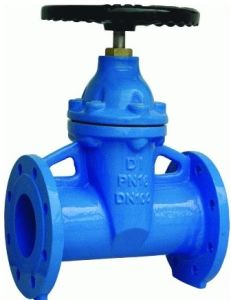DIN F5 Cast Iron Resilient Seated Gate Valve