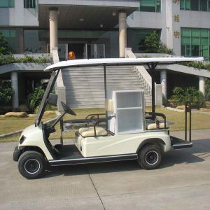 2 Person Ambulance Electric Buggy & 48 Volt Motor pictures & photos