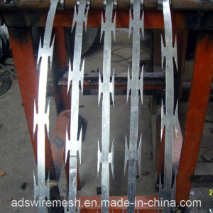 Galvanzied Razor Barbed Wire Mesh Fence pictures & photos