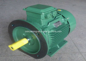 Y3 Series Motor with Model Y3-280s (IP55) pictures & photos