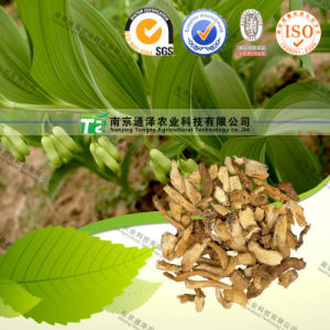 Natural Herbal Medicine Radix Polygonati Officinalis pictures & photos