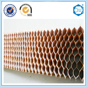 Light Weight High Strength Honeycomb Paper Core for Board Panel pictures & photos