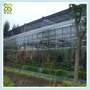 Solar Glass Greenhouse Greenhouse with Exhaust Fans pictures & photos