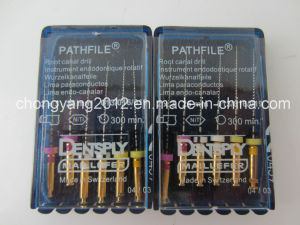 Dentsply Endodontic Rotary Files Pathfile pictures & photos