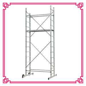 Scaffolding Ladder with Support Bar (DLSL101B) pictures & photos