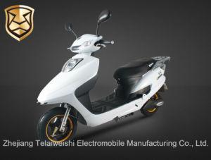 800W Front Disc Brake Brushless Motor Electric Motorcycle