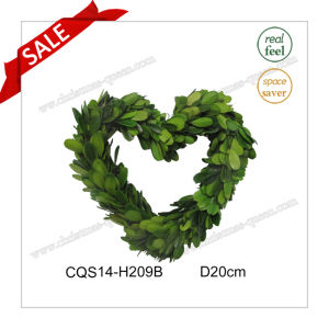 D20cm Wedding Decoration Spring Preserved Boxwood Decoration Craft pictures & photos