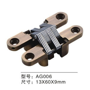 High Quality Zinc Alloy Concealed Door Hinge (AG006) pictures & photos