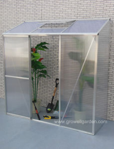 Medium Hobby Greenhouse (ME627-1) pictures & photos