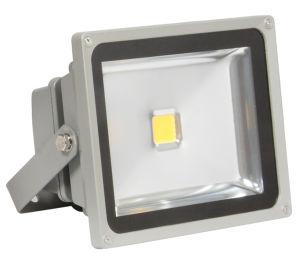 30W/40W/50W Hi Power LED Flood Lamp (ECO303/40EW/50W FLOOD LAMP) pictures & photos