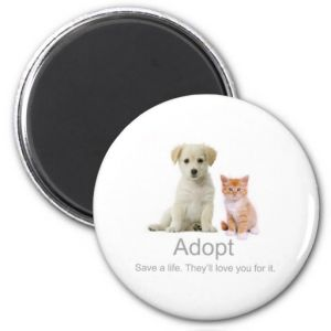 2017 New Great Adopt Fridge Magnet pictures & photos