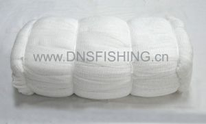 Green Nylon Monofilament Fishing Net pictures & photos