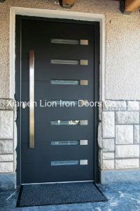 Super Quality Custom Single Iron Door modern Window Design pictures & photos