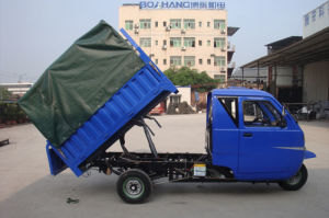 China Adult Motorized Tricycle pictures & photos