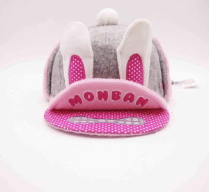 Unique Animal Children Winter Snapback Cap with Pompom on Top pictures & photos
