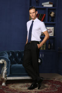 High Quality Men′s Short Sleeve Busines Dress Shirt of Slim Fit Style --Md1a8865 pictures & photos