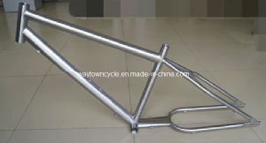 Bike Frame (WT-FR001A) pictures & photos