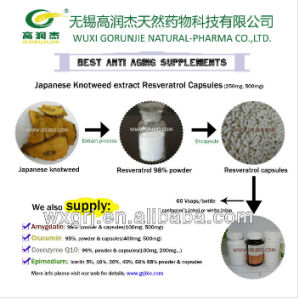 Antioxidant & Anticancer Polygonum Cuspidatum Extract Synthetic Resveratrol/Micronized Resveratrol with High Quality on Sell pictures & photos