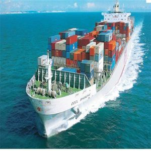 China International Shipping Services From Guangzhou to Kuwait pictures & photos