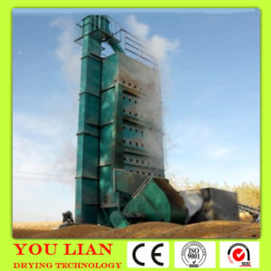 Hot Sale Pea Drying Machinery pictures & photos