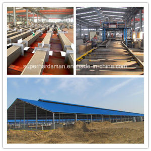 Super Herdsman Steel Frame Poultry Farm and House Construction pictures & photos