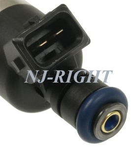Fuel Injector FJ236 for Buick, Chevrolet, Oldsmobile, Pontiac pictures & photos